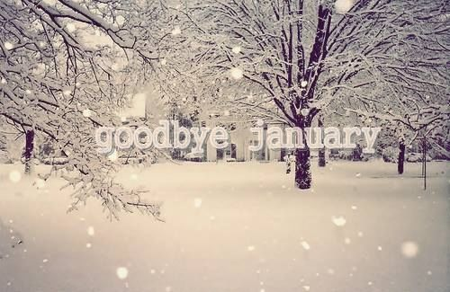 154851-goodbye-january
